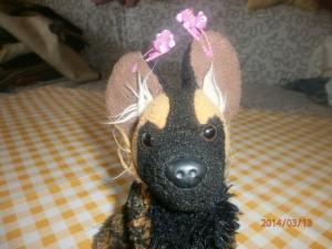 Haarklammern - Lilarosa.de