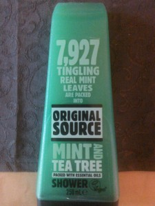 Original Source Mint& Tea Tree vorne