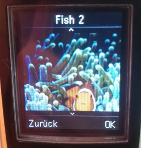Gigaset C620A Bildschirmschoner Fish 2